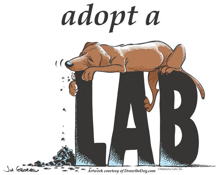 Adopt a Lab
