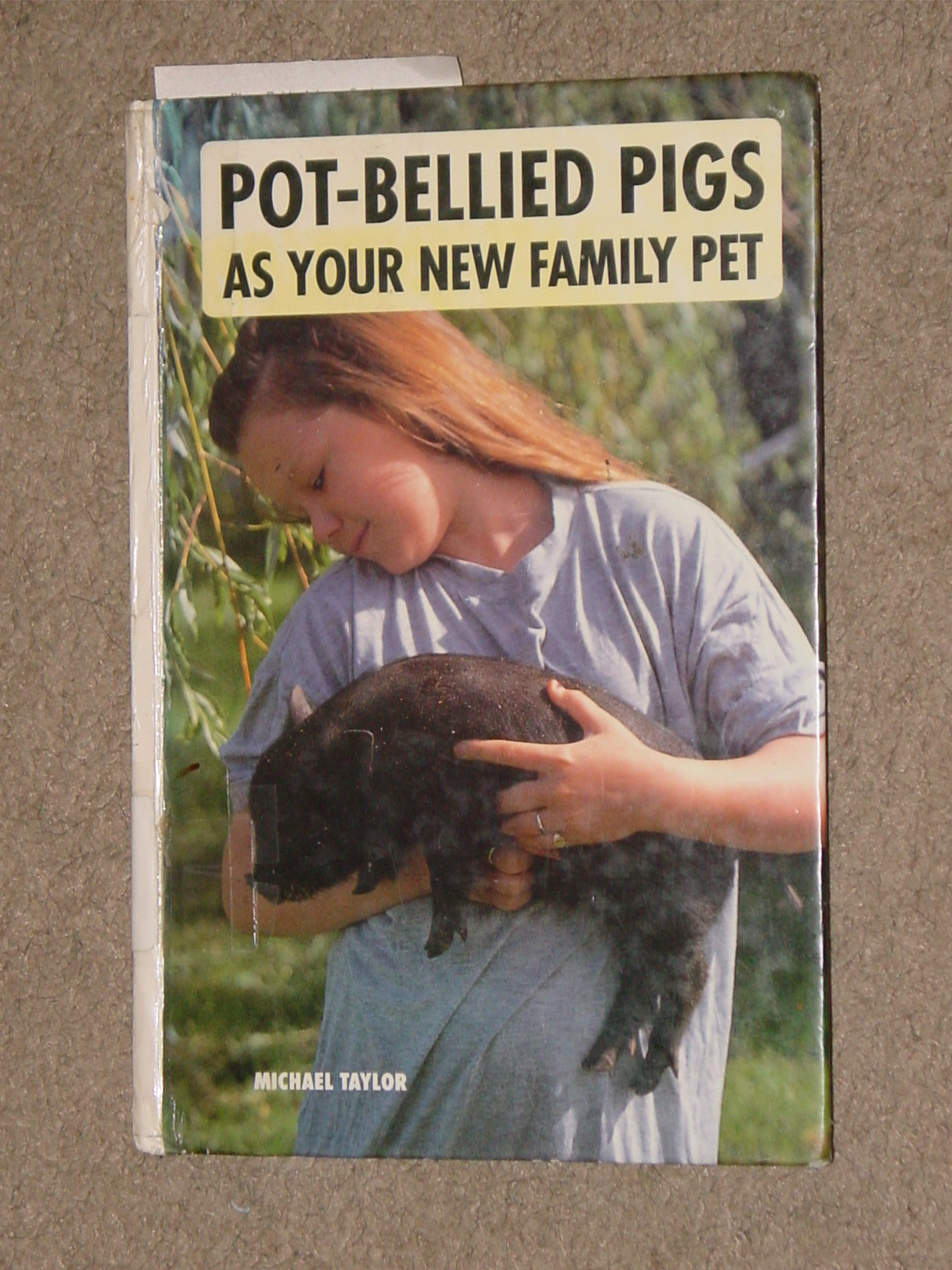 41-8743. Pot-Bellied Pigs As Your New Family Pet.