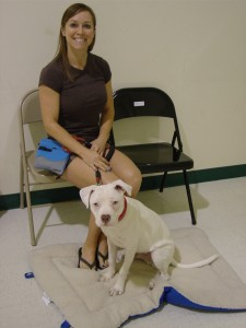 "52-9608. Amy and ""Mosby,"" a deaf Pit Bull terrier."