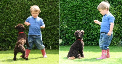 "Child training a dog: ""Instead of your dog jumping on you, what do you want it to do instead?"""