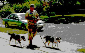 dsc04479a-16-Lady-Gypsy-Walking